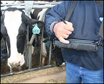 Mobile Demand TAblet PC at Dairy